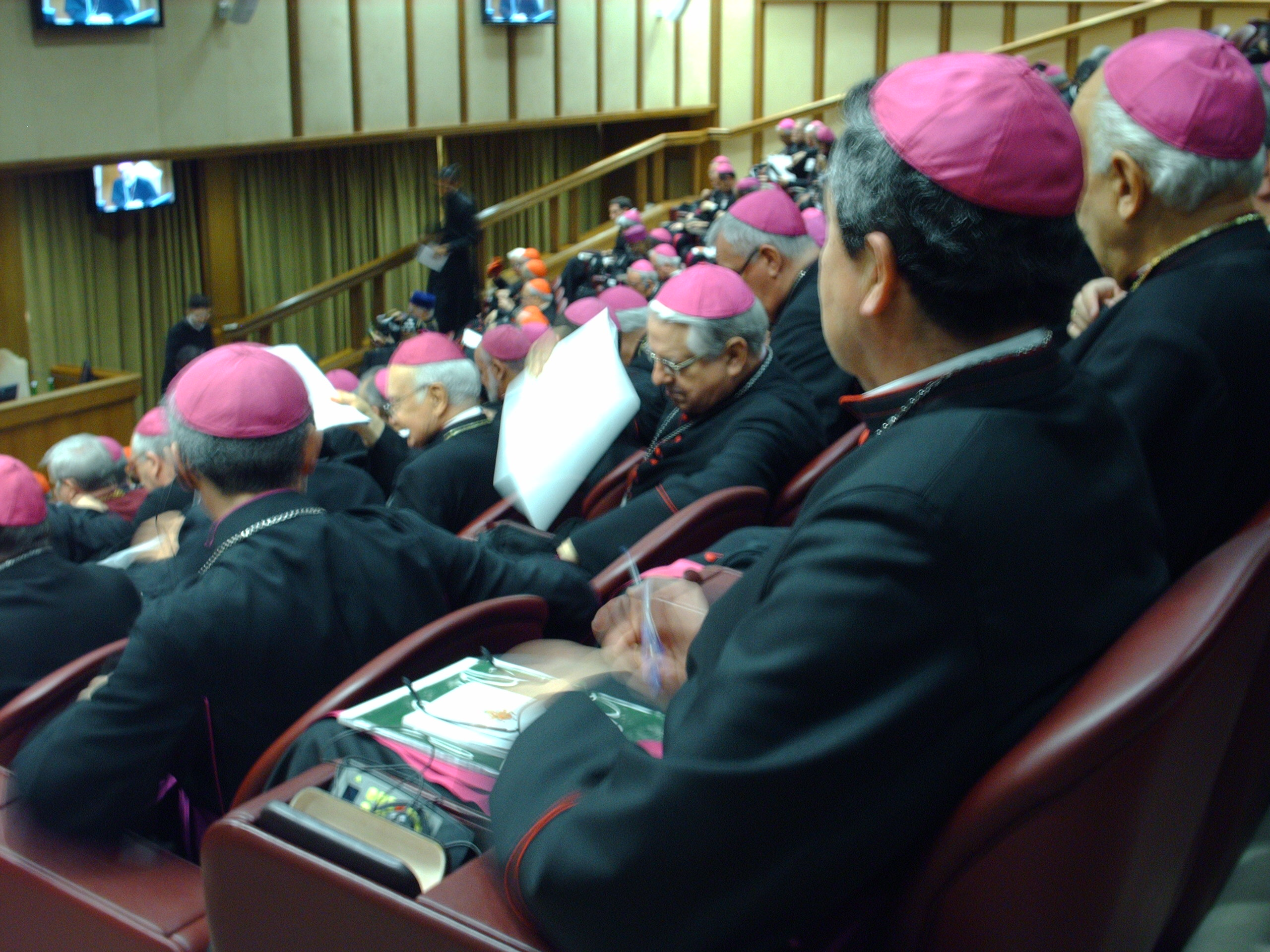 Bishops assembled in the upstairs auditorium of the Vatican's Pul VI Audience Hall.