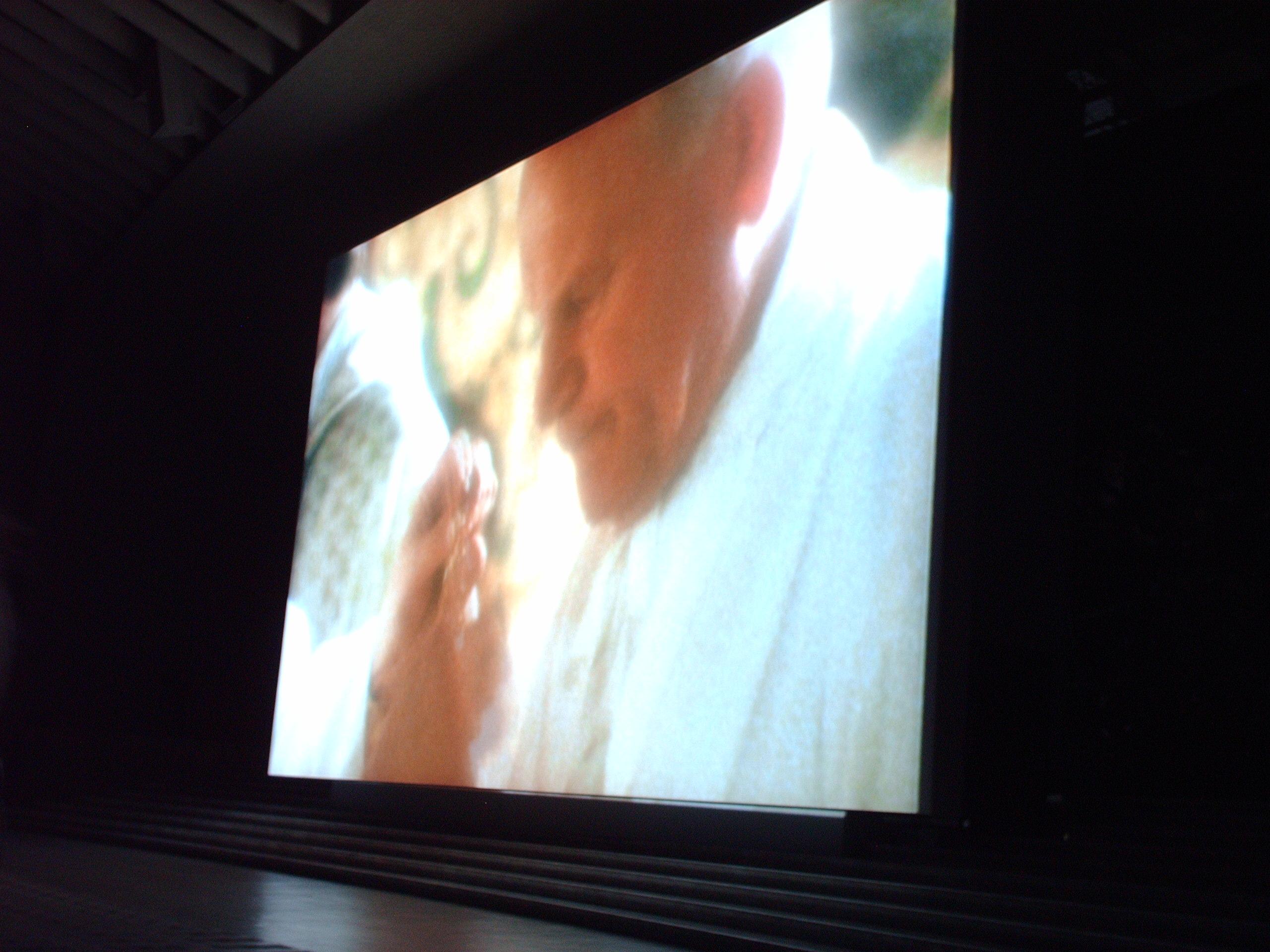 """Testimony"" screening in Paul VI Hall"