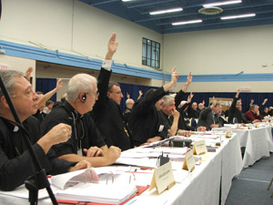 Canadian Bishops vote for Salt + Light (photo courtesy CCCB)