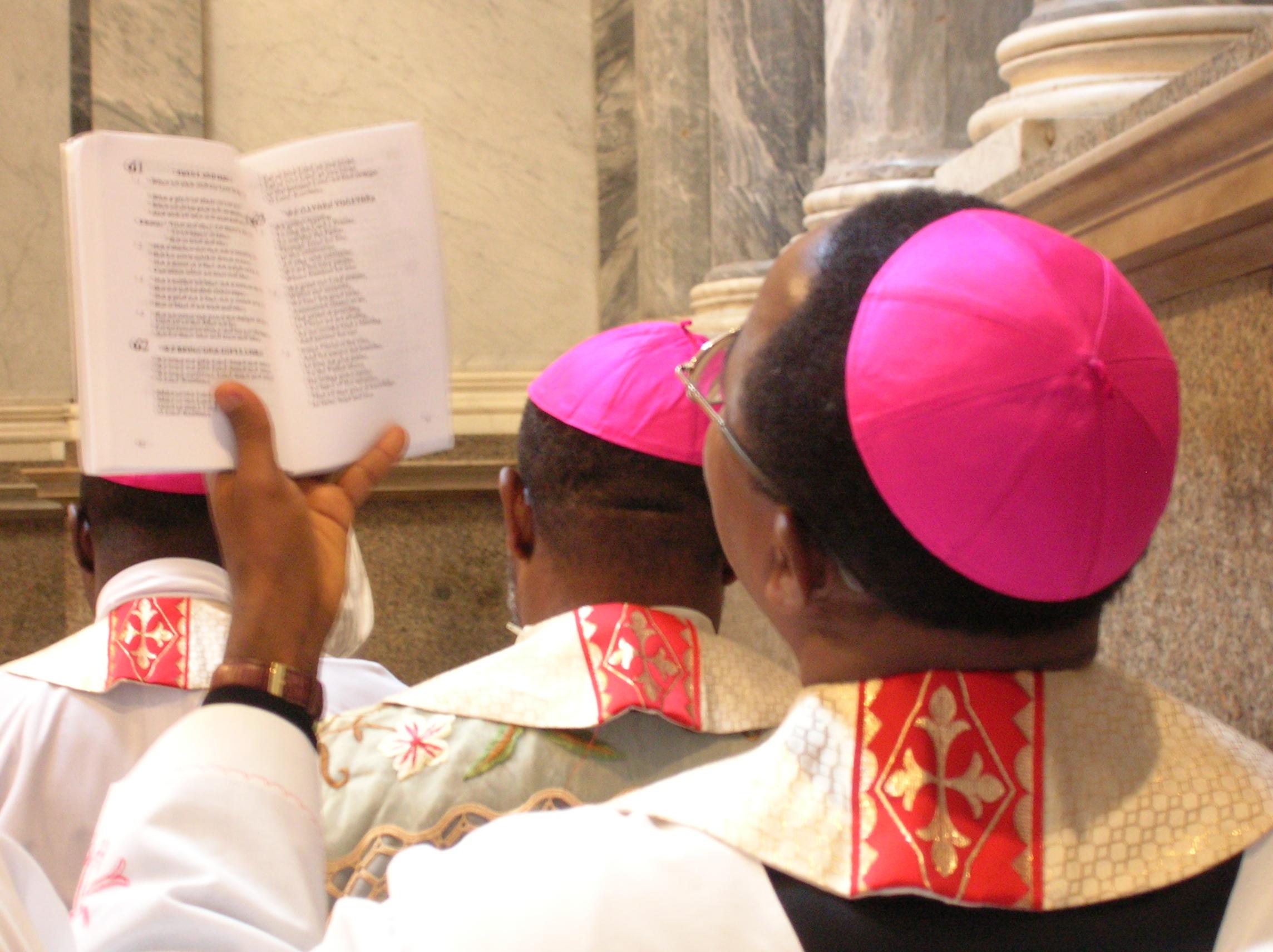 Nigerian bishops celebrating Holy Mass