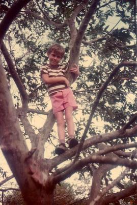 Pedrito in tree