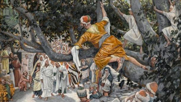 Zacchaeus cropped