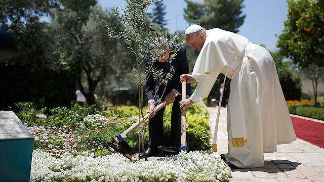Pope Francis and Israel's President Shimon Peres plant an olive tree as a symbol for peace after their meeting at the president's residence May 26. (CNS photo/ Amir Cohen, EPA)
