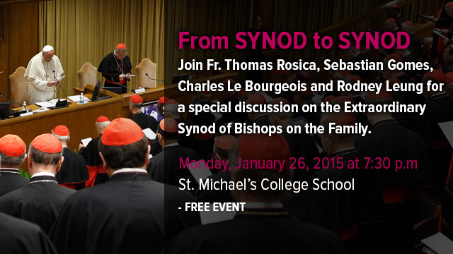 synod_to_synod_blog