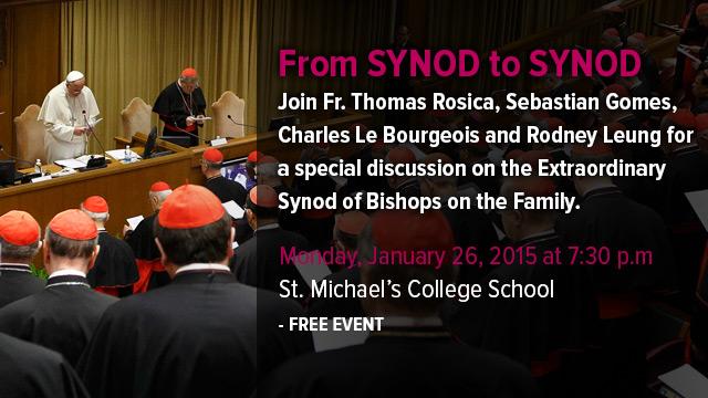 synod_to_synod_blog