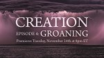 Watch All-New Episodes of Salt + Light's  Groundbreaking Series on Ecology – Episode 4: Groaning