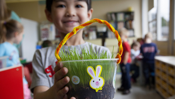 Alaskan preschooler displays grass students grew for their Easter baskets