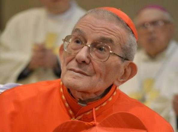 04 Capovilla Cardinal Loris