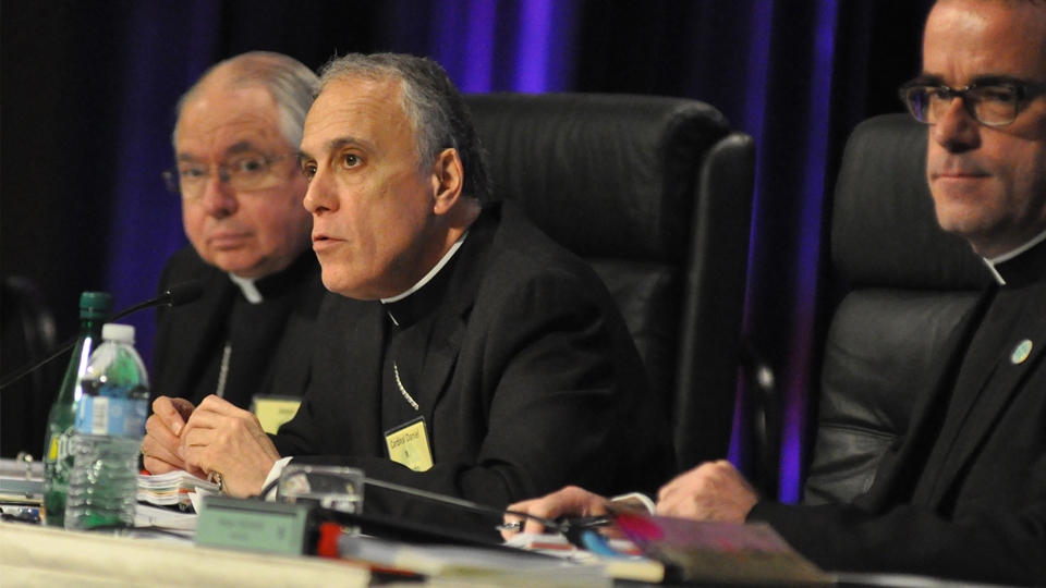 "President of U.S. Bishops' Conference Announces Effort That Will Involve Laity, Experts, and the Vatican as U.S. Bishops Resolve to Address ""Moral Catastrophe"""