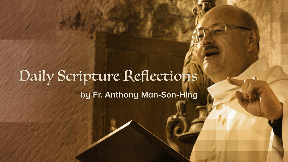 Daily Scripture Reflections