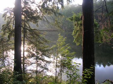 Ramona Lake campsite in Algonquin Park