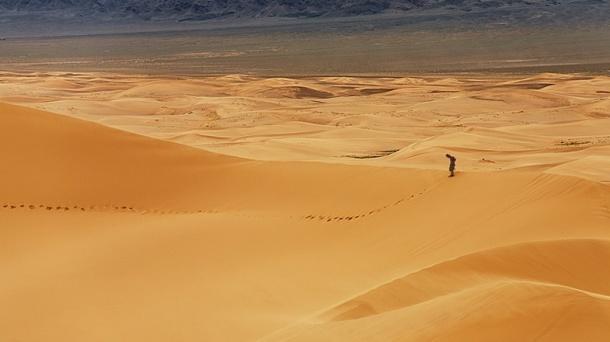 Desert traveler cropped