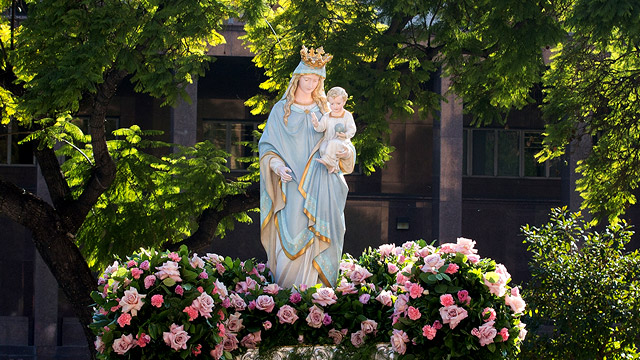A Reflection for the Solemnity of the Assumption of Mary – August 15