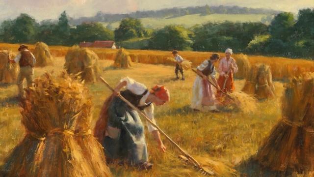 Harvest cropped