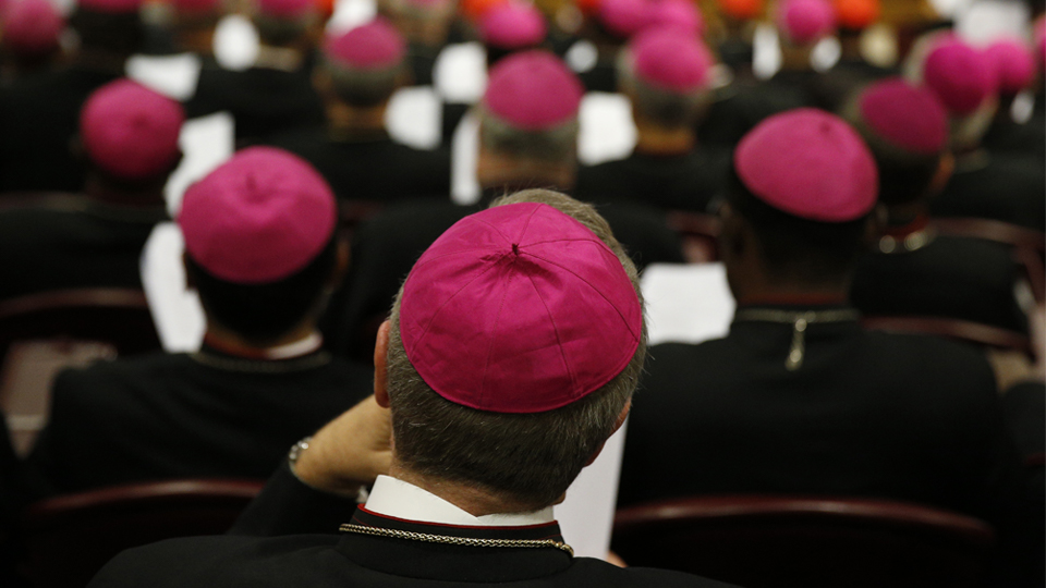 The Humbling Effect of the Synods of Bishops