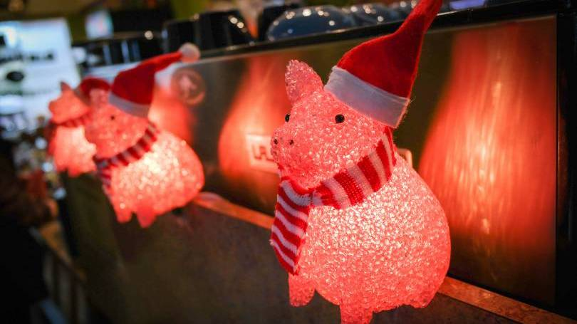Christmas lights in the shape of pigs with scarves and Santa hats
