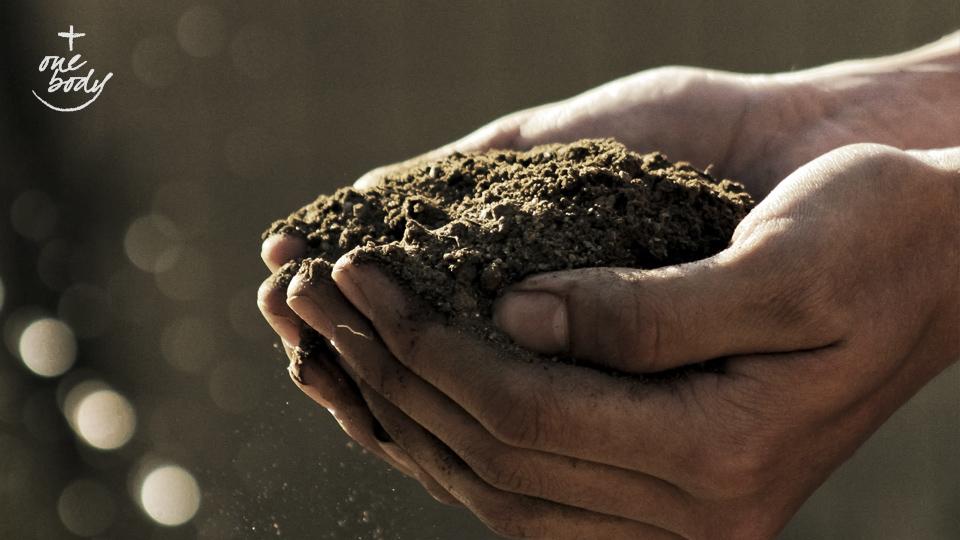 Tending the garden of Christian unity | One Body