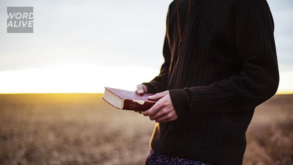We sow the Word of God, without ceasing! | Word Alive