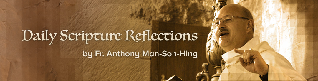 Daily Scripture reflections by Fr  Anthony Man-Son-Hing | Salt and