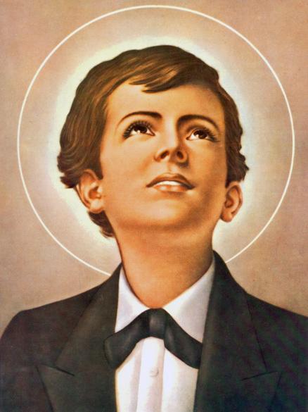 image-box-St-Dominic-Savio-lg