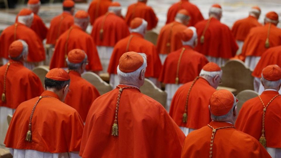教宗方濟各宣布將擢升14位新樞機