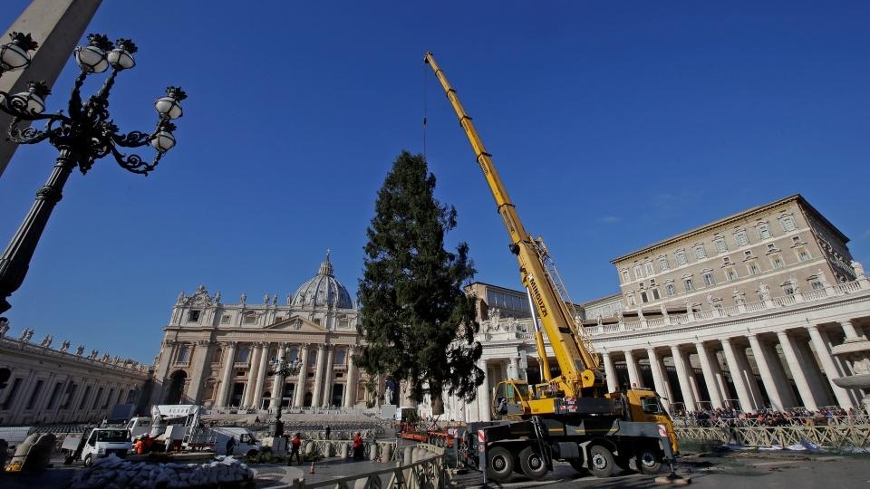 2019年聖伯多祿廣場上的聖誕馬槽和聖誕樹