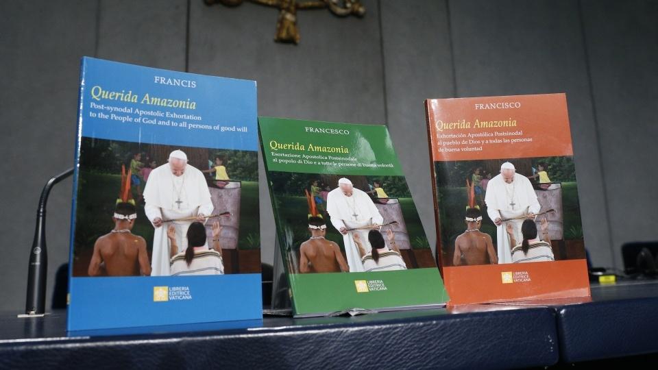 教宗方濟各頒布《親愛的亞馬遜》勸諭