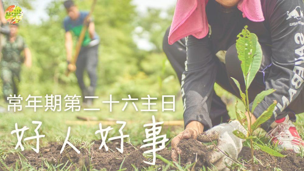 大自然靈修:常年期第二十六主日 【好人好事】福音經文反省