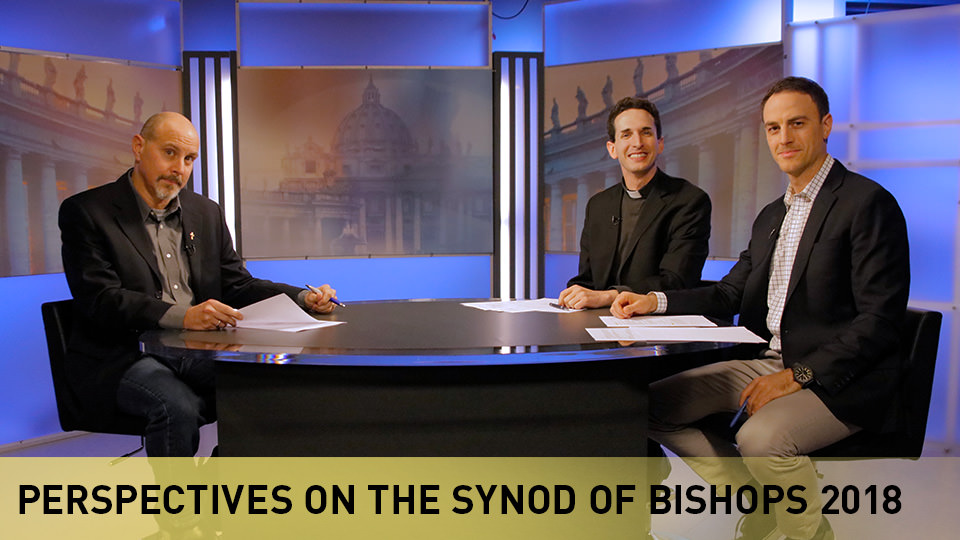 Perspectives on the Synod: Week 4