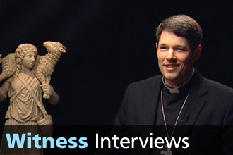 Witness Interviews