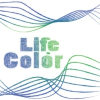 FX of Grace - Life in Color