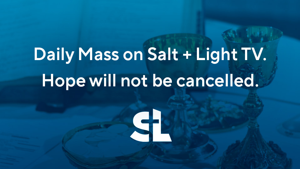 Daily Mass on Salt + Light TV. Hope will not be cancelled.